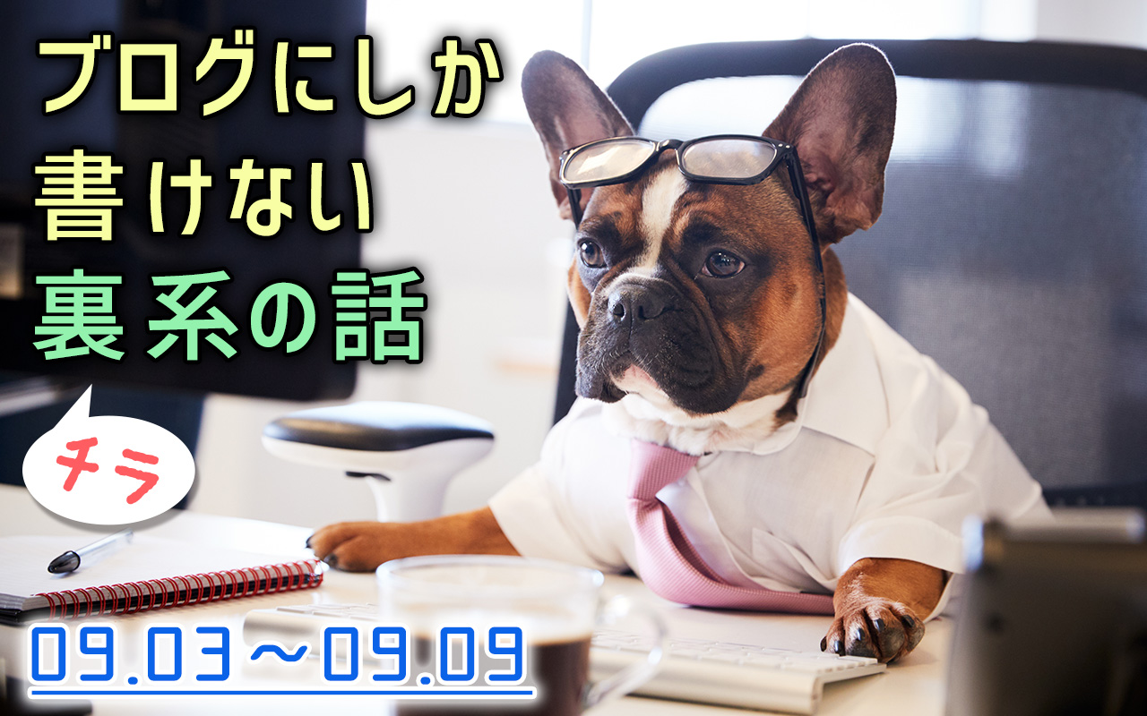 Someyaのブログにしか書けない話(9/3〜9/9)