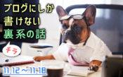 SOMEYAのブログにしか書けない話(11/12〜11/18)