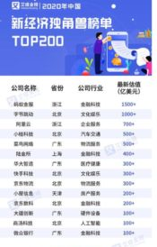 2020 China New Economy Unicorn Top 200 List